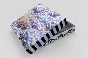 blue-hydrangeas-gift-box