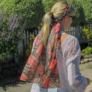 monarch-scarf-susan-walking-capitola-cliffs-july-2016