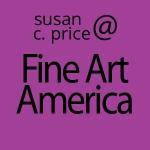 susan-c-price-fine-art-america