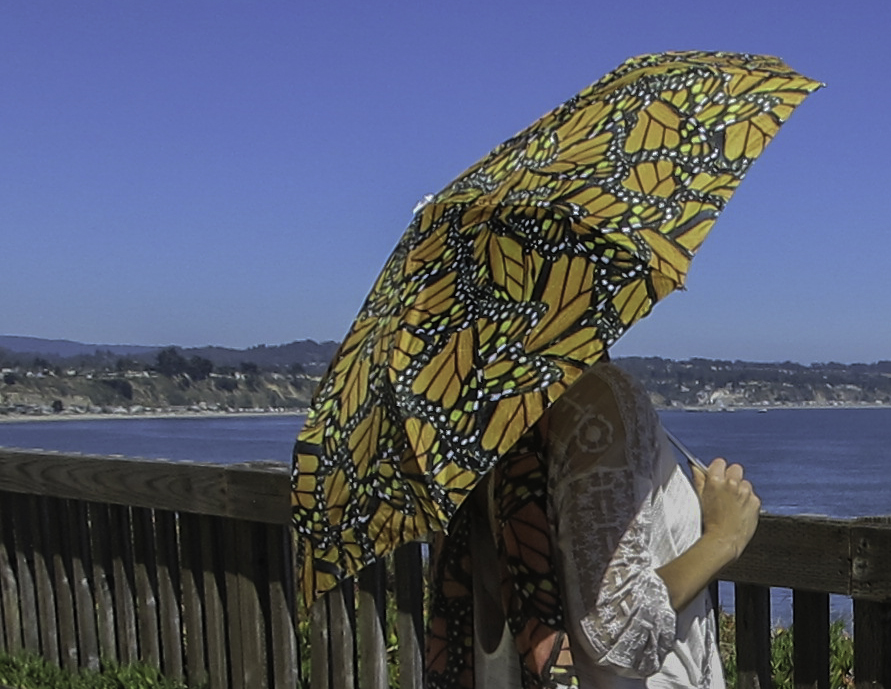 monarch-umbrella-capitola-cliffs